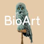 BioArt Altered Realities